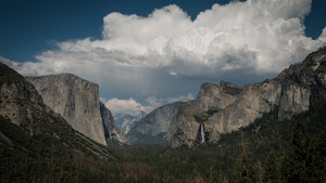 20,000 Humans Beneath The Trees, Yosemite Valley